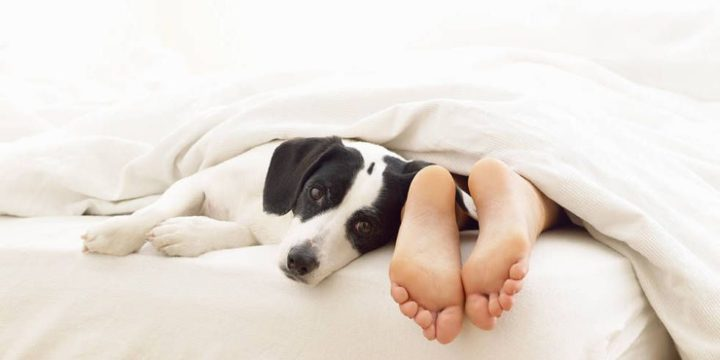 Why you should never neglect your feet in winter